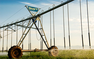 Farmers & Agriculture, Your Pivot Irrigation Experts